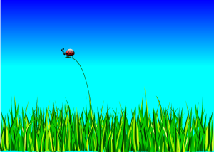 ladybug 158326 1280 - Anasayfa